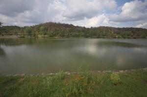 中央の大きな池