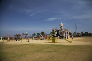 ひまわりの丘公園6
